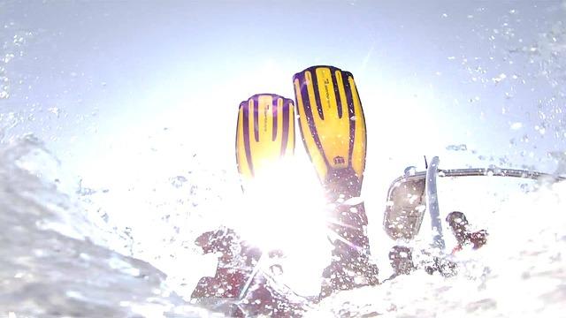 ダイビングフィン