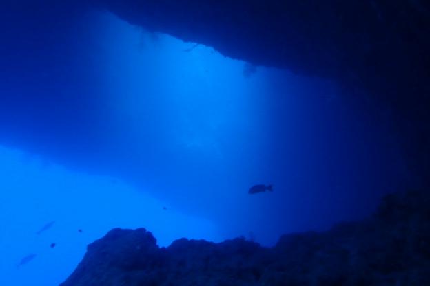 海の中の地形