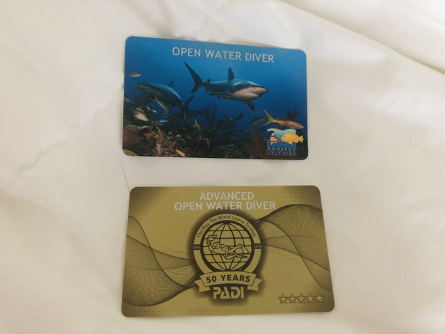 ダイビングCカード